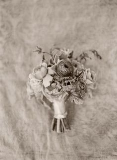 Love :: Gallery :: Elizabeth Messina Photography