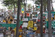 Signpost Forest, watson Lake, Yukon.  In this photo are a face, a square dance couple, a buckle, and Dan, Candy, and Mr. Mugsey.  06/2013.