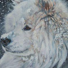 Samoyed art print CANVAS print of LA Shepard painting 12x12 dog art