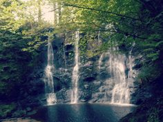 Waterfall, Glenariff Forest - August 2013