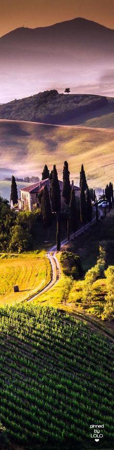 Tuscany Landscape Italy | LOLO❤︎