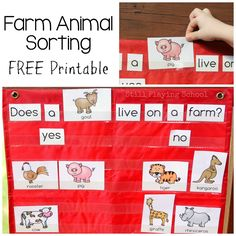 Free printable for farm animal sorting sentences**make for all sorts of things!!