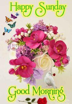 Good Morning Sunday Images, Good Morning Happy Friday, Good Morning Flowers, Good Morning Wishes, Good Morning Quotes, Happy Sunday, Sunday Wishes, Sunday Greetings, English