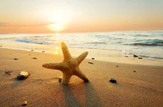 Mar, oceano, pôr do sol, praia, areia, estrelas do mar, natureza, céu, nuvens, pôr do sol, verão, praia, mar