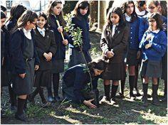 Dia Mundial da Árvore e da Floresta no Instituto de Odivelas Todos os anos na Quinta do Instituto de Odivelas são plantadas árvores pelas alunas. Na fotografia estão alunas do 5.º ano e do 6.º ano No ano ano lectivo 2013-2014, pela primeira vez em 114 anos de existência, o Instituto de Odivelas não teve alunas do 5.º ano — em Instituto de Odivelas.