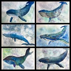First round of our watercolor whales are done! What a fine project to end the Art Room year. A rehash of many skills we practiced this year: observational drawing, watercolor techniques and slowly building up layers. Our inspiration was Kids years old. Kids Art Class, Art Lessons For Kids, Art Lessons Elementary, Watercolor Whale, Kids Watercolor, Watercolour, Summer Art Projects, Projects For Kids, Project Ideas