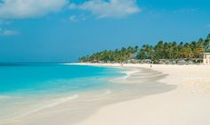 All Inclusive Resort in Aruba - Divi Aruba All-Inclusive