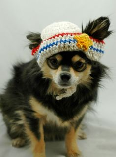Dog hat crocheted, Sailor hat, Medium, red and blue stripes with yellow star