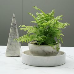 Fern-Fridays, featured here: our Basic Obelisk and Baby Basic Round Tray (both available now) and the Essential Key Bowl (back in stock soon) #marblebasics