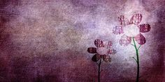 DİRİL YÜREĞİMİN UMMANLARINA Nerdy Wallpaper, Cute Laptop Wallpaper, Cute Tumblr Wallpaper, Background Hd Wallpaper, Cute Girl Wallpaper, Wallpaper Iphone Disney, Scenery Background, Beautiful Wallpaper, Cool Wallpapers For Girls