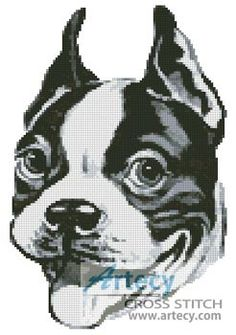 Boston Terrier Drawing Cross Stitch Pattern http://www.artecyshop.com/index.php?main_page=product_info&cPath=1_7&products_id=754