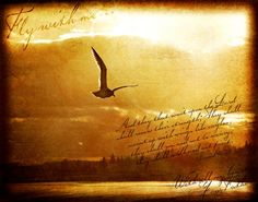 fly with me...Isaiah 40:31