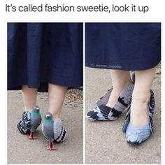 Its called fashion sweetie look it up IG memes supplier - Daily LOL Pics Funny Fashion, Weird Fashion, Fashion Fail, Funny Shoes, Lit Shoes, Unique Shoes, Jeremy Renner, Crazy Shoes, Weird Shoes