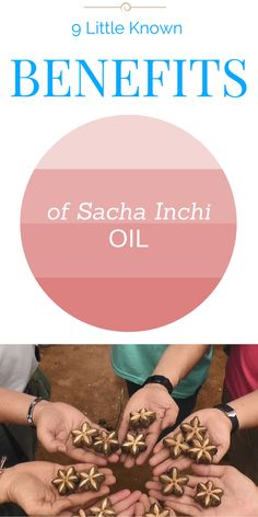 Sacha Inchi Oil benefits include the potential to help keep our brains, skin, and hair healthy. Sacha inchi seeds are cold-pressed to maintain nutrients. Healthy Oils, Healthy Eating Tips, Healthy Food, Healthy Women, Oil Benefits, Health Benefits, Wellness Tips, Health And Wellness, Organic Lifestyle