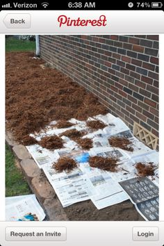 Newspapers and mulch
