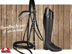 Divoza Horseworld, everythin for you & you're horse! Mondoni Glamour rijlaars en de Pagony Alassio Hoofdstel met strass. Bekijk ze op www.divoza.com #pagony #mondoni #glamour #strass #mode #fashion #horse #paard #ruiter #rider #equestrian #ruitersport