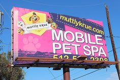 austin // texas // ATX // south first street // only in austin:   rock n' roll pet spa                 http://www.muttlykrue.com/