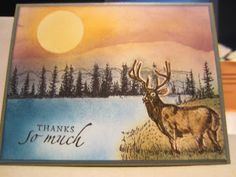Handmade by Kathie K: Wilderness Inspiration for Greeting Cards