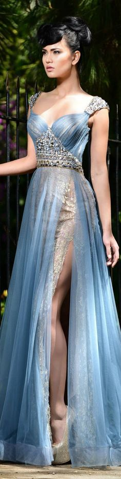 Rami Salamoun - beautiful blue gown with very high side-slit, fitted bodice with silver applique just below the bust line, and silver cap sleeves. Lined in metallic fabric that shows through the sheer blue fabric.