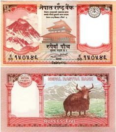 Yak Nepal, Belgian Congo, Money Pictures, History Of India, Freedom Fighters, Silver Coins, Monet, Asia, African