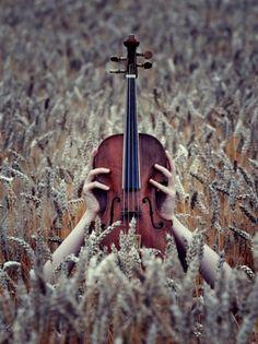 Fiddle Anyone?