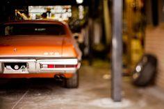 GTO. I want.....