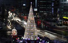 L'albero di Natale di fronte al municipio di Seul, Corea del Sud.