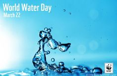 Celebrating Canada's building water movement :     Today is World Water Day – which for us in Canada also marks the 'big day' for Canada Water Week. This day, and this week, is an opportunity to reflect on how and why fresh water matters to us.