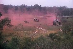 Vietnam War *....1-9 Cav Tay Ninh 1970, I may have been on one of those choppers.....Gralex