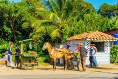 9 cosas que le pasan a un #habanero cuando #visita el… http://www.cubanos.guru/9-cosas-le-pasan-habanero-cuando-visita-oriente-cubano/