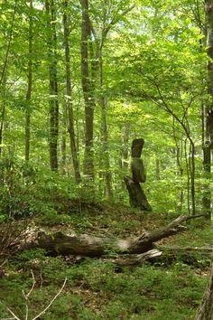 Rock cairns artfully adorn the Langhammer Woods. June 15, 2017.