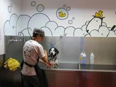 While most puppy owners often groom their pet for the looks and appearance, there's more to pet grooming than merely that. Grooming your canine friend regularly promotes a healthy body and overal Pet Shop, Dog Grooming Shop, Dog Grooming Salons, Dog Grooming Business, Luxury Dog Kennels, Dog Washing Station, Dog Spa, Pet Hotel, Pet Resort