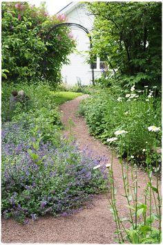 polkua Garden Of Eden, Olympus Digital Camera, Garden Inspiration, Stepping Stones, Bloom, Outdoor Decor, Plants, Plant, Planting
