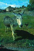 """New artwork for sale! - """" Donkey Chicken Animals Hen Farm  by PixBreak Art """" - http://ift.tt/2lpRdWW"""