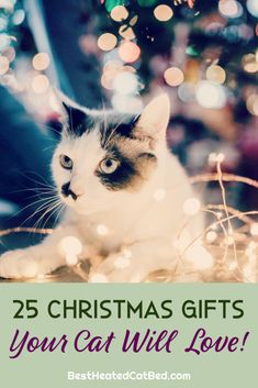 It's hard to believe, but the holiday shopping season is here. As you pick out presents for family and friends, remember to include your favorite feline on your gift-giving list. If you are stumped for what to get your kitty this year, we can help! We have rounded up the best Christmas gifts for cats so you can spoil your kitten this holiday season. Christmas Ties, Great Christmas Gifts, 1st Christmas, Ugly Christmas Sweater, Holiday, Heated Outdoor Cat House, Heated Cat Bed, Heating Pads, Cute Stockings
