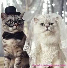 couple=)
