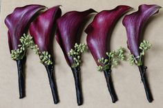 Flowers - purple mini calla lily boutonnieres. For the groomsmen, fathers, and usher(s).