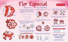 65 flor Especial.jpg (1259×784)