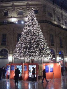 Swarowski Baum Mailand von Barthelmess
