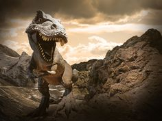It turns out dinosaurs weren't cold-blooded killers after all, but nor were they warm. Researchers now believe that, extraordinarily, they could self-regulate their body temperatures.