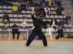 Fast martial arts demonstration---Alex fighting!!!!