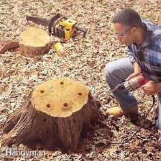 How to Remove a Tree Stump Painlessly - Step by Step: The Family Handyman