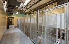 Animal Shelter Design - Stanislaus County Animal Services Facility - Modesto, CA