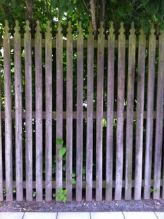 Bettinas blad: Vi samlar vackra staket! Glamping, Country Fences, White Picket Fence, Privacy Fences, Fence Gate, Garden Fencing, Plank, Fenced In Yard, Green Garden