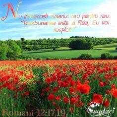 Versete