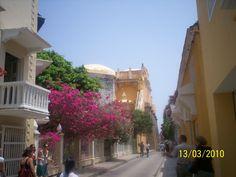 Los colores de su edificación y las flores, hacen a la belleza de la Cartagena antigua.