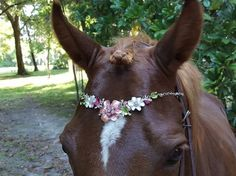 Pink and White Flower Garden Browband for Horses - Equine Bling Tack Brow Band Jewelry -  Horse Lover Gift