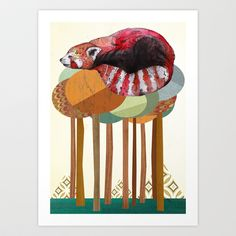 Red Panda Art Print by Sandra Dieckmann - $18.00