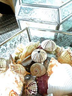 Aug 13 -- The August Break -- Home | Bonita Rose, Life.Love.Color.Art a life unrehearsed
