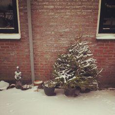 Garden, #winter Photo by Bauke Beert Keizer (baubau88)